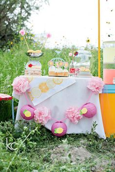 Lemonade Stand Birthday Party Theme