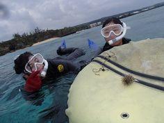透明度が抜群の沖縄の海! - http://www.natural-blue.net/blog/info_10071.html