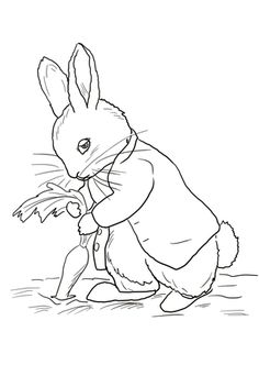 Click Peter Rabbit Stealing Carrots Coloring Page For Printable Version