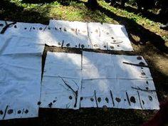 Open ideat: Metsämatikkaa Minna Salmisen johdolla