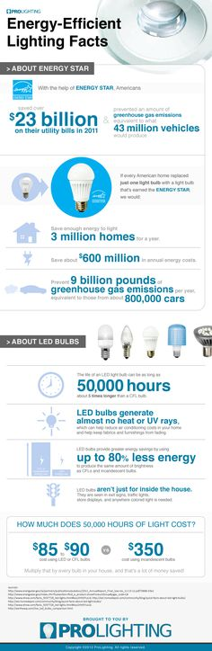 Energy-Efficient Lighting Facts  Save yourself over $250 by switching from incandescent bulbs to LED bulbs. Learn this and other interesting facts about energy efficient lighting with this infographic brought to you by ProLighting.com.