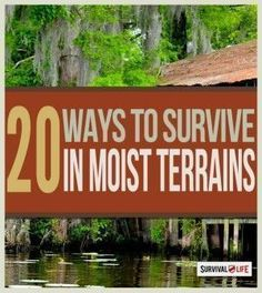 Outdoor Survival in Swamps | Survival Skills & Defense You Need To Know When SHTF By Survival Life http://survivallife.com/2015/01/26/outdoor-survival-in-swamps/