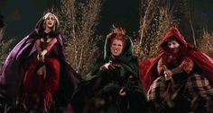 Why Has Hocus Pocus Become THE Halloween Family Favorite? - America's Most Haunted Película Hocus Pocus, Hocus Pocus 1993, Hocus Pocus Movie, Hocus Pocus Witches, Halloween Themed Movies, Disney Halloween Costumes, Halloween Themes, Halloween Queen, Haunted Halloween