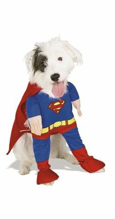 Superman Deluxe Pet Costume Size X-Large by Rubie's Costume Co, http://www.amazon.com/dp/B004RKQL3O/ref=cm_sw_r_pi_dp_g6.Sqb0H6F9N0