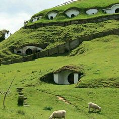 Hobbit Town, New Zealand and it exists