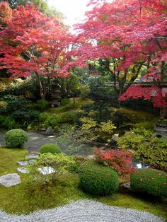 Japanese Garden in Autumn-how beautiful; I can see myself sitting out there reading a book:)