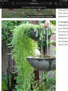 Garden ideas with hanging bird baths