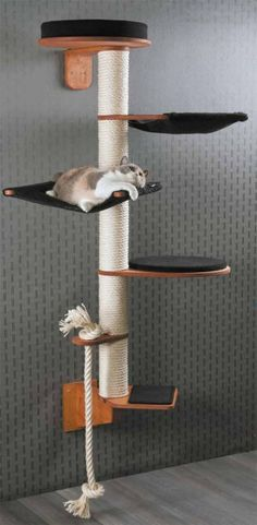 Height 186 cm Weigh Height 186 cm Weight 19 kg Wall Mounted Cat Tree Model Wendelin consists of modules: Wall bracket (H 22 cm B 13 cm T 37 cm) Step (W 30 cm D 33 cm H cm) Rope holder with sisal rope (W 13 cm D. Diy Cat Tree, Cat Trees Diy Easy, Cool Cat Trees, Cat Towers, Cat Playground, Playground Design, Cat Shelves, Cat Condo, Cat Room