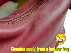 Mould on your leather bag? Some tips on how to clean a mouldy leather bag | My Women Stuff
