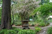 botanicka-zahrada39.jpg