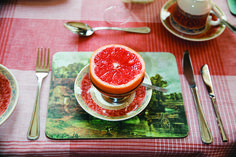 Martin Parr (Renes half a grapefruit for something a bit racy it was occasionally grilled with sugar on it) x