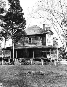 Overseer's house at an abandoned turpentine camp.  (State Archives of Florida)
