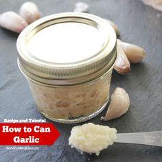 Canned Garlic Recipe