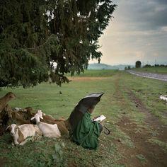 Ethiopia, 2009. Photo by Juan Manuel Castro Prieto