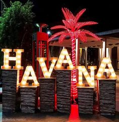 A lit up Havana Night with LED palm trees and marquee letters! 🌟 - A lit up Havana Night with LED palm trees and marquee letters! 🌟 A lit up Havana Night with LED palm trees and marquee letters! Havanna Nights Party, Havanna Party, Event Themes, Event Decor, Party Themes, Cuban Party Theme, Havana Nights Party Theme, Party Deco, Tropical Party