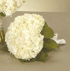 You only need three white stems to make the beautiful white hydrangea wedding bouquet.