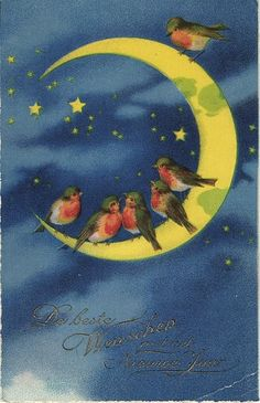 robins in the moon