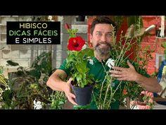 Hibisco Dicas Fáceis e Simples - YouTube Hibiscus, Youtube, Hibiscus Plant, Tips, Simple, Exotic Flowers, Plants, Paper Flowers, Farmer