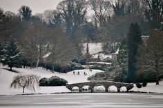 Winter at Stourhead House - Mere - Wiltshire - England Winter Scenes To Paint, England Winter, Plan My Wedding, Formal Gardens, Let It Snow, Winter Garden, Landscape Architecture, Big Day, Places To Go