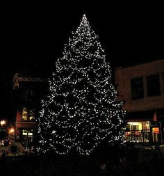 Tree Lightings and Old Fashioned Christmas Celebrations