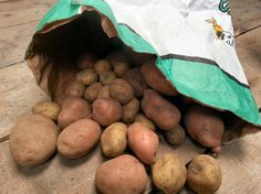 Late Autumn is generally the time that most people begin lifting their maincrop potatoes for storage. Read these tips to get the most of your crop