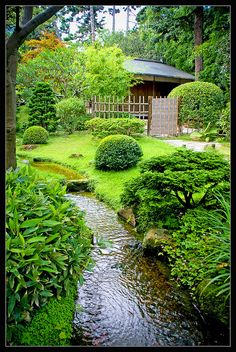 Japanese Garden Theme For A Getaway In Your Own Backyard Small Japanese Garden, Japanese Garden Design, Japanese Gardens, Japanese Water Feature, Japanese Plants, Zen Gardens, Japanese Landscape, Water Gardens, Ponds Backyard
