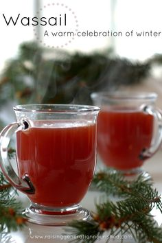 Wassail :: A warm celebration of winter Don't forget to add a delicious beverage to the holiday menu! Here's one I'd like to try!