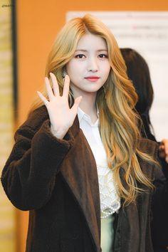 Gfriend arrival at Music Bank to owner Kpop Girl Groups, Korean Girl Groups, Kpop Girls, Gfriend Yuju, Gfriend Sowon, Kpop Girl Bands, Ideal Beauty, Ailee, Best Kpop
