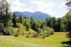 Field near Schloss Linderhof (Castle) in Bavaria, Germany; Bayern, Deutschland