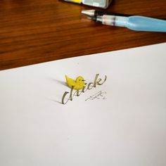 3D Calligraphy Anamorphic Letters - duck