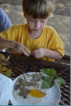 Leaf Impressions in Salt Dough - Autumn Craft