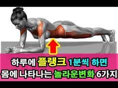 1 일 10 초으로 예쁜 복근! 뱃살을 제거하는 놀라운 운동 (Ranking House) - YouTube