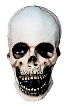 Skull Scary Horror Latex Adult Halloween Costume Mask * Visit the image link more details. Scary Halloween Masks, Scary Mask, Adult Halloween, Halloween Skull, Funny Halloween Costumes, Adult Costumes, Alien Costumes, Girl Costumes, Halloween Ideas