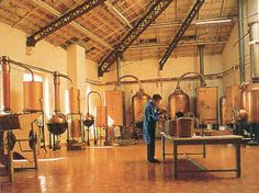 Distillation and extraction room | image only, quite breathtaking