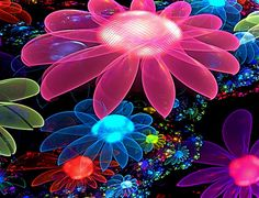 colorful images | HD Wallpapers Colorful Flowers Desktop Backgrounds - Wallpaperssmall ...