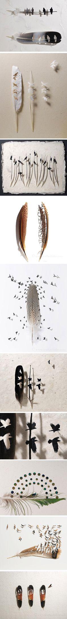 Basé à Washington, Chris Maynard est le roi de la minutie et de la précision. Il réalise des oeuvres à partir de plumes en les découpant pour créer de petits oiseaux. Le rendu est incroyable, car on imagine la difficulté de découper cette matière qu'est la plume, très fragile et pouvant se désagréger fa