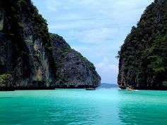 The Phi Phi Islands in Thailand are some of the best for Scuba diving and are the setting of movies like 'The Beach'. If you get the opportunity to dive these sparkling waters, you'll find tropical fish and possibly the venomous, but beautiful blue-spotted octopus- if you're lucky!  I've been around these islands and they're simply breathtaking!