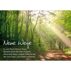 Neue Wege/Bild1