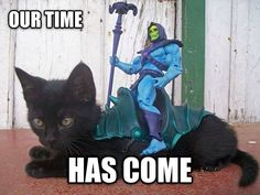 Skeletor, kitten, panther, Our time has come