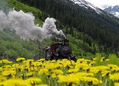 Train Photo Steam 2.