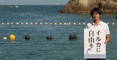 Despite international pressure, the annual hunt in Taiji continues to kill…