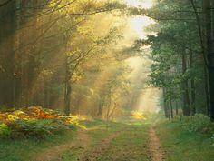 #Landscape #Nature #HD