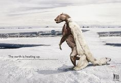60 Powerful Social Issue Ads That'll Make You Stop And Think Public Service Announcements - Social Issue Ad 44 Global Warming Poster, Public Service Announcement, Social Awareness, Creative Advertising, Advertising Agency, Advertising Design, Social Issues, Print Ads, Baby Animals