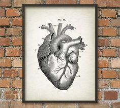 Heart Anatomy Wall Art Poster - Vintage Heart Book Plate Illustration Print - Antique Heart Diagram Poster - Human Biology Student Gift Idea