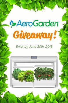 Enter to win an AeroGarden Farm - perfect for homes and classrooms for garden education! Organic Gardening, Indoor Gardening, Garden Gifts, Kids Learning, Gift Guide, Helpful Hints, Giveaway, Herbs, School Gardens