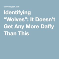 "Identifying ""Wolves"": It Doesn't Get Any More Daffy Than This"