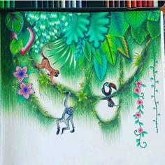 482 Best Magic Jungle Images On Pinterest