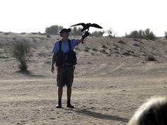 Impressões de Viagens: Passeio no deserto em Dubai