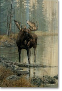 Found it at Wayfair - Quiet Water Moose Painting Print on Wood Wildlife Paintings, Wildlife Art, Animal Paintings, Moose Deer, Moose Art, Moose Hunting, Pheasant Hunting, Turkey Hunting, Archery Hunting
