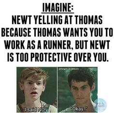 """Y/n: """"But Newt, I want to be a Runner!"""" Newt: """"No, y/n. It's too dangerous."""""""